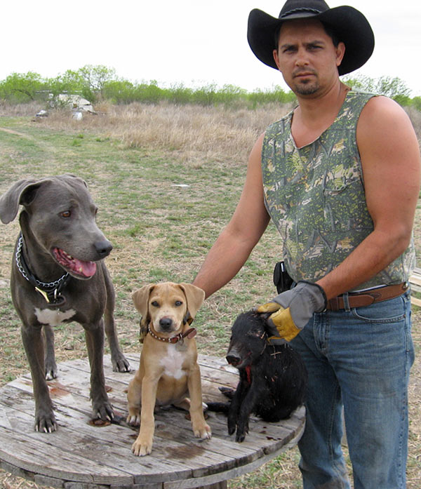 Hog Bay Dog Breeds