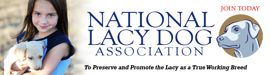 National Lacy Dog Association